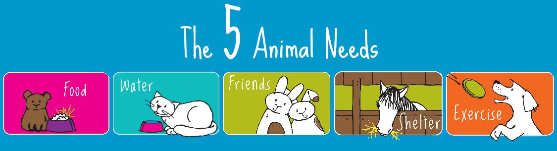 The 5 Animal Needs Song - RSPCA South Australia